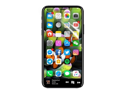 Протектор FULL iPhone X / XS  / iPhone 11 Pro