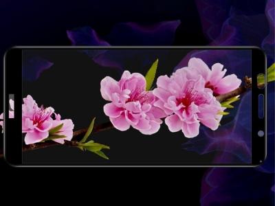 Стъклен Протектор 3D IMAK за Huawei Y5 Prime (2018)/ Y5 (2018)/Honor Play 7, Черен